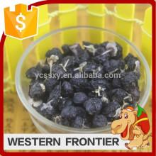 2016 Hot sale organic cultivation type black goji berry