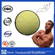 Trenbolone Enanthate de poudre de stéroïde anabolisant de Tren Enanthate