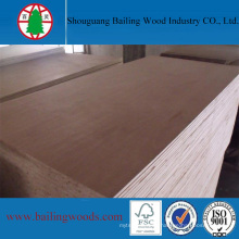 Best Quality Veneer Blockboard From Manufacturer