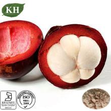 Extracto de Mangostão Nutritivo Alto para o Tratamento da Dor Abdominal