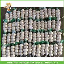 Super Qualität chinesischen frischen reinen weißen Knoblauch 4.5CM