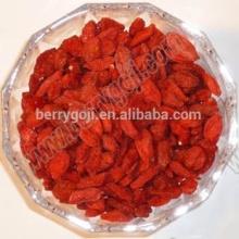 Goji fruit / Ningxia goji berry