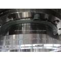 WNRF B564 Monel 400 10 Inch CL150