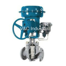 Caged Control Valve with Actuator