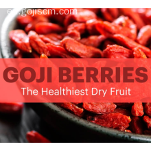 Chinese Goji berry-Anti envejecimiento Superfood
