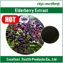 Elderberry Extract with ISO Certificate