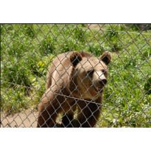Low Price High quality Zoo Mesh (avec ISO9001 et SGS)