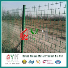 High Quality Plastic Coated Holland /Dutch Wire Mesh /Euro Fence