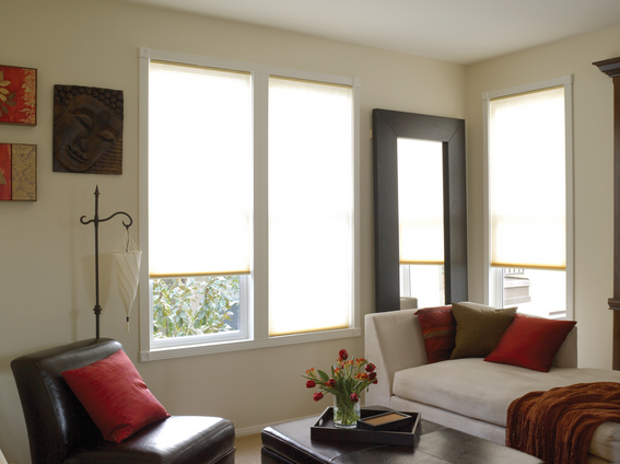 LIGHT FILTER roller shades