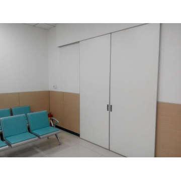 Rénovation de porte d'hôtel, portes intérieures blanches de Hotsale, conception de maison de porte en bois de Hotsale