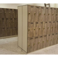 wood grain color gym hpl locker with competitive price