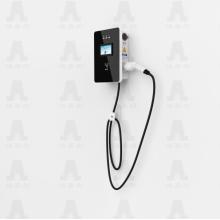 tragbares AC EV-Ladegerät 7Kw Standard Edition