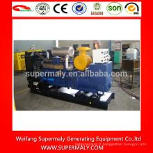 Générateur diesel 250kw haute performance OEM avec CE, ISO, EPA