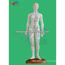 Produit d'acupuncture humain 48CM, modèle d'acupuncture féminin