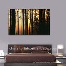 Восхитительная картина холма в лесу Санрайз