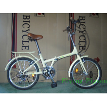 Variable Speed 20inch Folding Bicycle (FD-024)