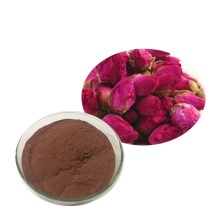 Suministro de fábrica de polvo de jugo de rosa Flowder Rose