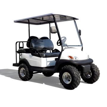 Популярные сад благородный 2 местный, 48В дешевые мини-электрический гольф-кары