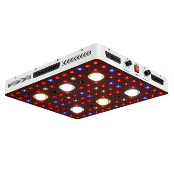 Gewächshaus Cree Cxb 3590 LED COB Grow Light