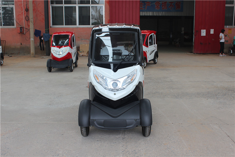Black white Neighborhood Electric Vehicles