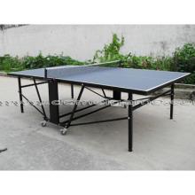Table Tennis Table (DTT9028)