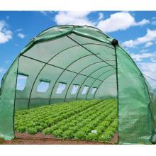 Greenhouse PE grid fabric