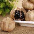 Produtos de alho preto para comida ocidental