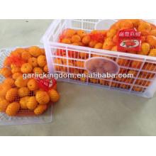 2013 fresh nanfeng baby mandarin from BROTHER KINGDOM