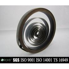 Custom Design Stainless Steel Constant Force Spring