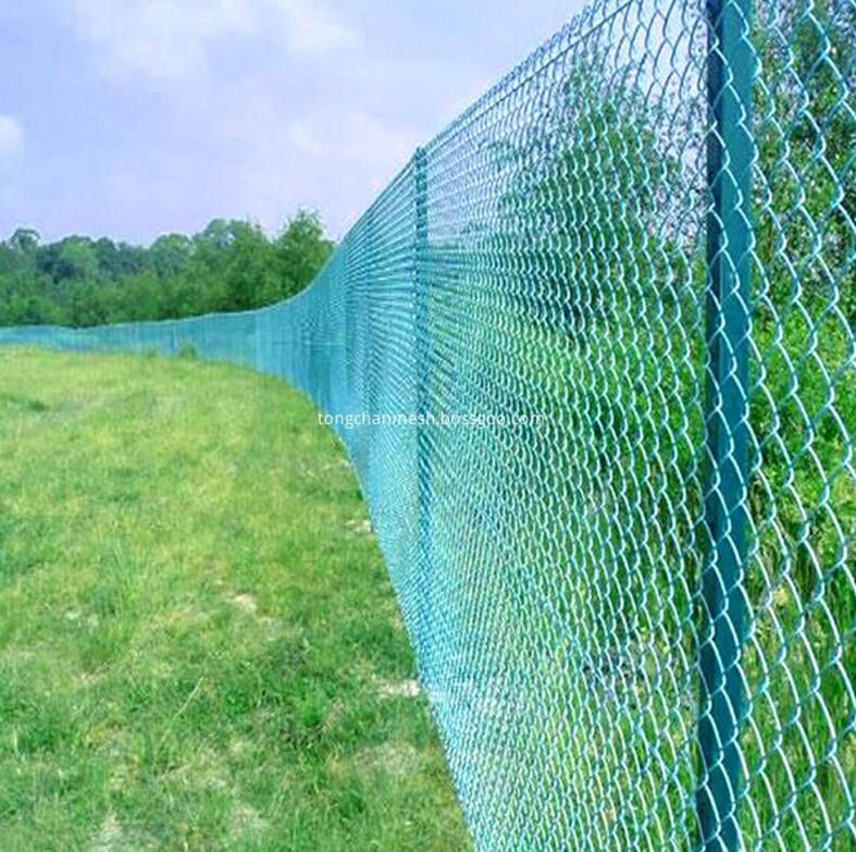 chainlink fence 3