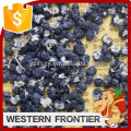 new crop organic freeze-dried black goji berry