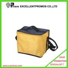 Personalizado saco colorido do refrigerador / sacos isolados (EP-C6211)