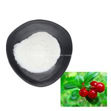 bearberry leaf extract alpha arbutin powder 99%