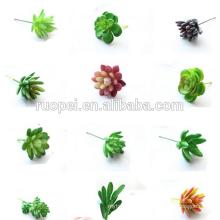 Wholesale artificielle plante succulente