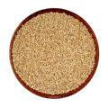 Hot Selling Organic Roasted Chopped White Sesame