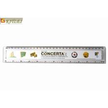 Logo impreso estudiante promocional Transparente regla de plástico en 15cm los 20cm los 30cm