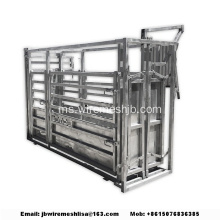 Heavy Duty Hot Dipped Galvanized Cow Crush