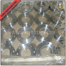Ss 304/316 Flanges (YZF-F101)