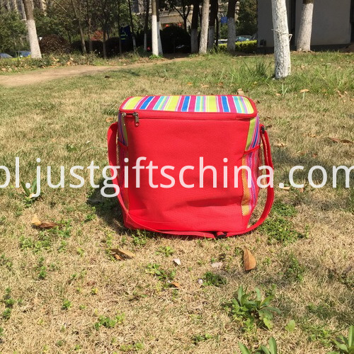 Item Name-Promotional Vertical Stripe Henkel Cooler Bags_2