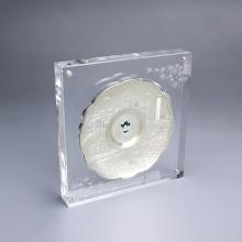 APEX Coin Collection Acrylständer mit Magneten