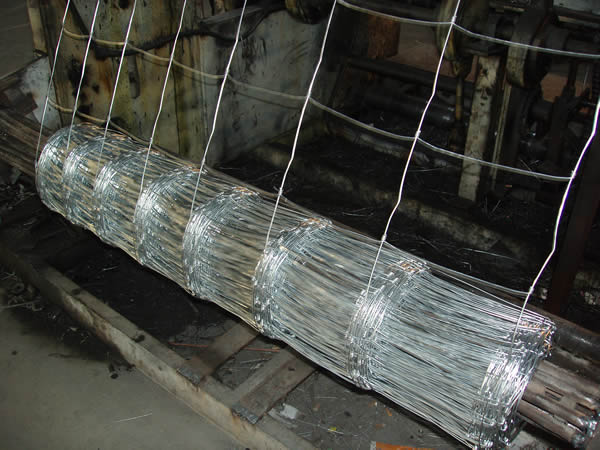 galvanized cattle fence