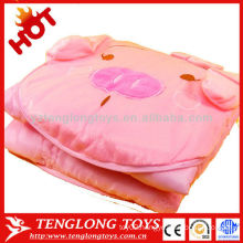 OEM hot sale warm and soft lovely cartoon plush pillow blanket