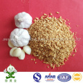 Granules d'ail frits de qualité supérieure en provenance de Chine