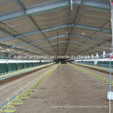 Open -Light Steel Structure Chicken House for Tropic Area