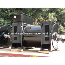 Sale 10500V Middle Speed AC Sychronous Alternators (5601-6 900kw/800kw)