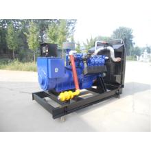 300KW Natural Gas Generator Deutz TBD236V8 Engine with HCI444FS Alternator