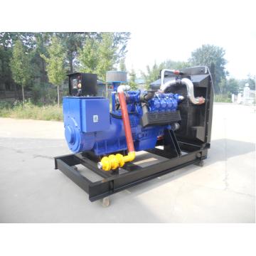Motor de Deutz TBD236V8 300kw Gas Natural generador con alternador HCI444FS