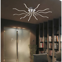 New Design Home Decoration LED Ceiling Lamp (MX15004-14A)