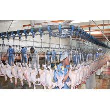 Автоматического убоя птицы Оборудование для бройлеров