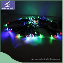 Luz solar colorida de la secuencia de la Navidad de la Navidad